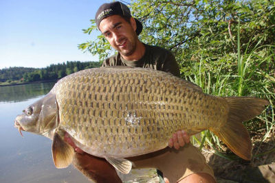 HOME - Carpers Paradise