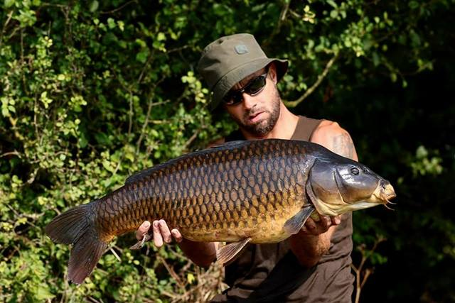 CLEARWATER SYNDICATE - ENGLAND - Carpers Paradise